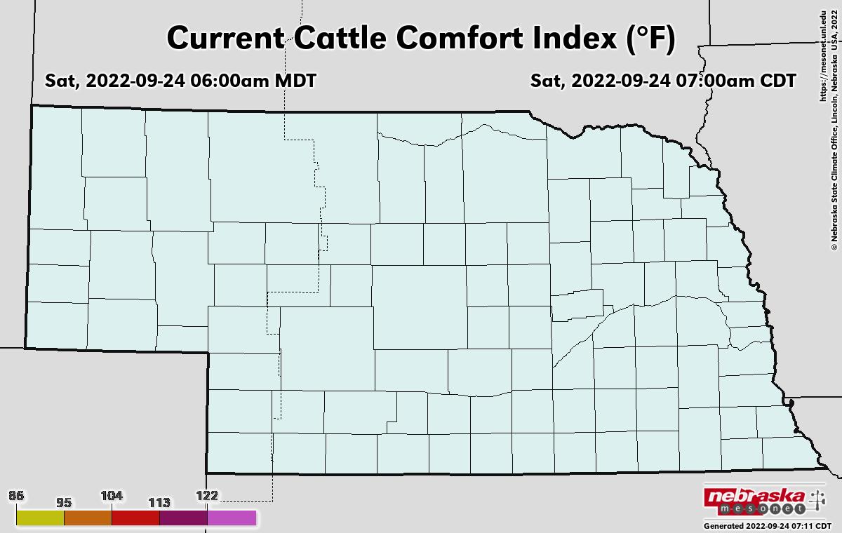 current cattle comfort levels